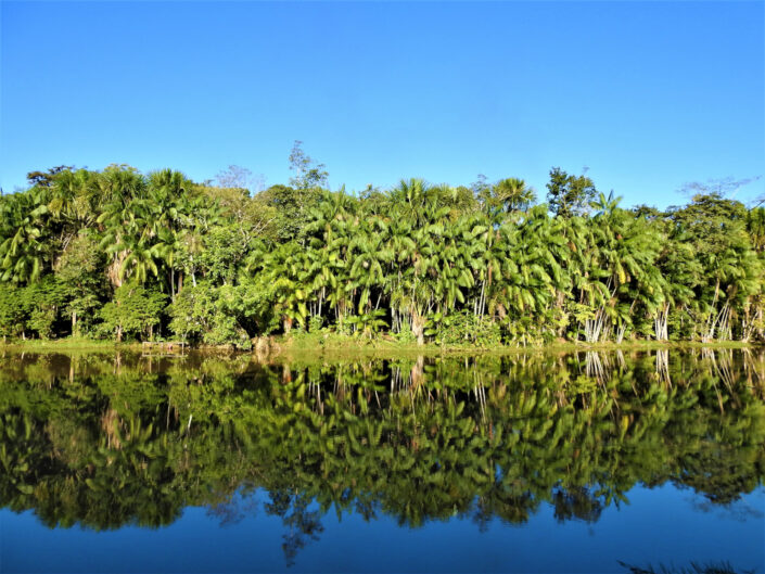 Julio Acosta - Lake and forest used for formal indigenous training in Brazil