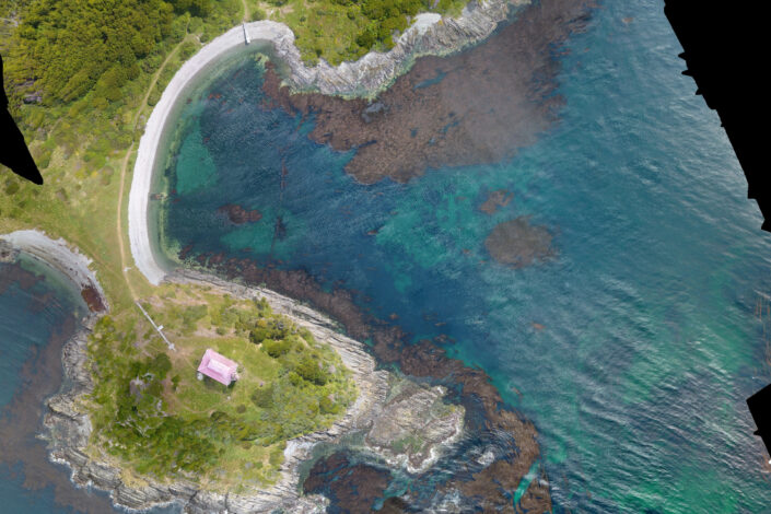 Alejandra Mora-Soto - Giant Kelp Forests on the southernmost corner of the world: San Isidro Lighthouse, Strait of Magellan (Chile)